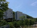 海边单间公寓短租一个月650至750元可做饭