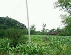 全州 养殖场50亩 厂房 2000平米 牧草场