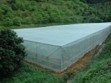 HDPE圆丝防虫网