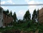 广利创业路 土地 650平米