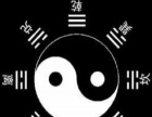 郑州平面设计ps/cdr/ai等专业培训 淘宝美工