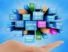 网络整合营销策划公司 北京圣蓝途网络科技有限公司