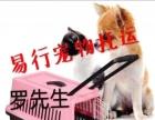 专业宠物托运/泉州宠物托运至全国