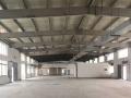金山兴塔独栋1500平高10米带行车厂房出租