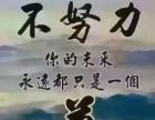 表演面试技巧之正确的站姿漯河艺翔影视艺考培训