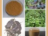 紫苏籽提取物 提取物厂家 品质保证