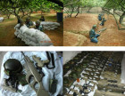 昆明野战 老A野战拓展机构开展军事训练 打野战(赢西藏旅游)