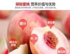 自驾游采摘有机鲜桃,大园采摘,质量保证