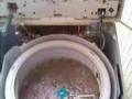 建邺区月安街洗衣机 空调 冰箱 油烟机清洗维修