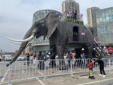 一手机械大象出租全新亮相 机械大象出租