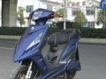 本店电动车 高品质 低价格 炫酷车型+ 环保电动摩托车 时尚流行