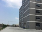 龙池新建厂房3万平出租