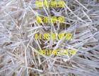 徐汇区保密文件销毁静安商业机密资料销毁上海废纸销毁厂家