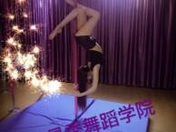 舞蹈教学视频 舞蹈培训视频 东莞舞蹈培训班