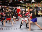 北京武術散打培訓班就近授課,免費體驗