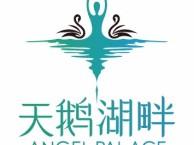 赵公口附近少儿芭蕾舞培训班-专注少儿芭蕾舞-天鹅湖畔