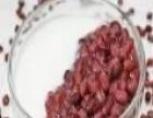 永州蛋糕西点面包糕点烘焙奶茶甜品培训创业的首选