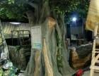 园林假山假树