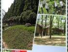 杭州亲子游-富阳新沙岛欢乐亲子一日游