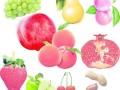 汕头水果店果缤纷加盟
