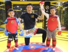 北京暑假泰拳培训班-北京暑假散打培训班-北京暑假拳击培训班