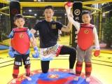 北京暑假散打培训班-北京暑假泰拳培训班-北京自由搏击培训班