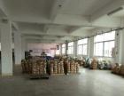 三乡鸦岗工业区600平方标准厂房出租