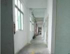 马新工业区 独栋楼上950平整层带装修厂房招租