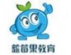 蓝莓果教育加盟