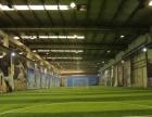 伯纳乌室内足球场