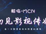 鲸临MCN短视频代运营项目