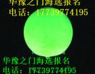 河南电视台华豫之门海选在线鉴宝华豫之门咨询电话