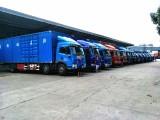 广州专业货物拖车运输 中港车业务服务