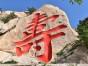 青岛口碑地接社 青岛3日2晚深度环游天主教堂+八大关+崂山