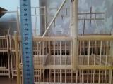 精品鸟笼出售