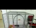 折叠式大中型狗笼子