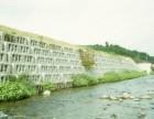 阶梯式生态护坡河道护岸