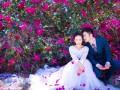 深圳天长地久初秋婚纱照仅需2999元