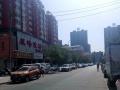 福居地产 海东路蓝天中学后面 电梯公寓单间出租