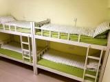 女生宿舍床位单间出租 安贞桥东附近 整屋没有隔断