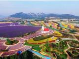 上海营销策划正规撰写来千寻咨询