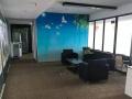 省植物园对面天然氧吧写字楼,精装868精装带家具