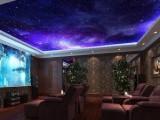 无锡江阴星空顶家庭影院设计与安装 价格优惠 服务专业