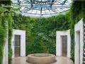 植物墙加盟 绿植景观墙加盟 生态花墙加盟