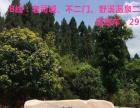 2017年春节周边游自驾套餐预售!天天接!