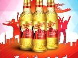 海沧品牌青春小啤酒系列产品招免费加盟代理