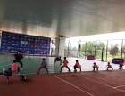 武昌篮球训练营,扬风篮球训练基地,名师任教,5折报名优惠