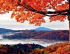 熔炼团队好选择 秋季枫叶拓展