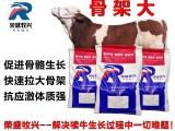 北京荣盛牧兴饲料拉大骨架牛饲料肉牛预混料供应