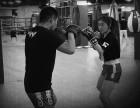 專業格斗 搏擊散打站立式格斗等你來挑戰